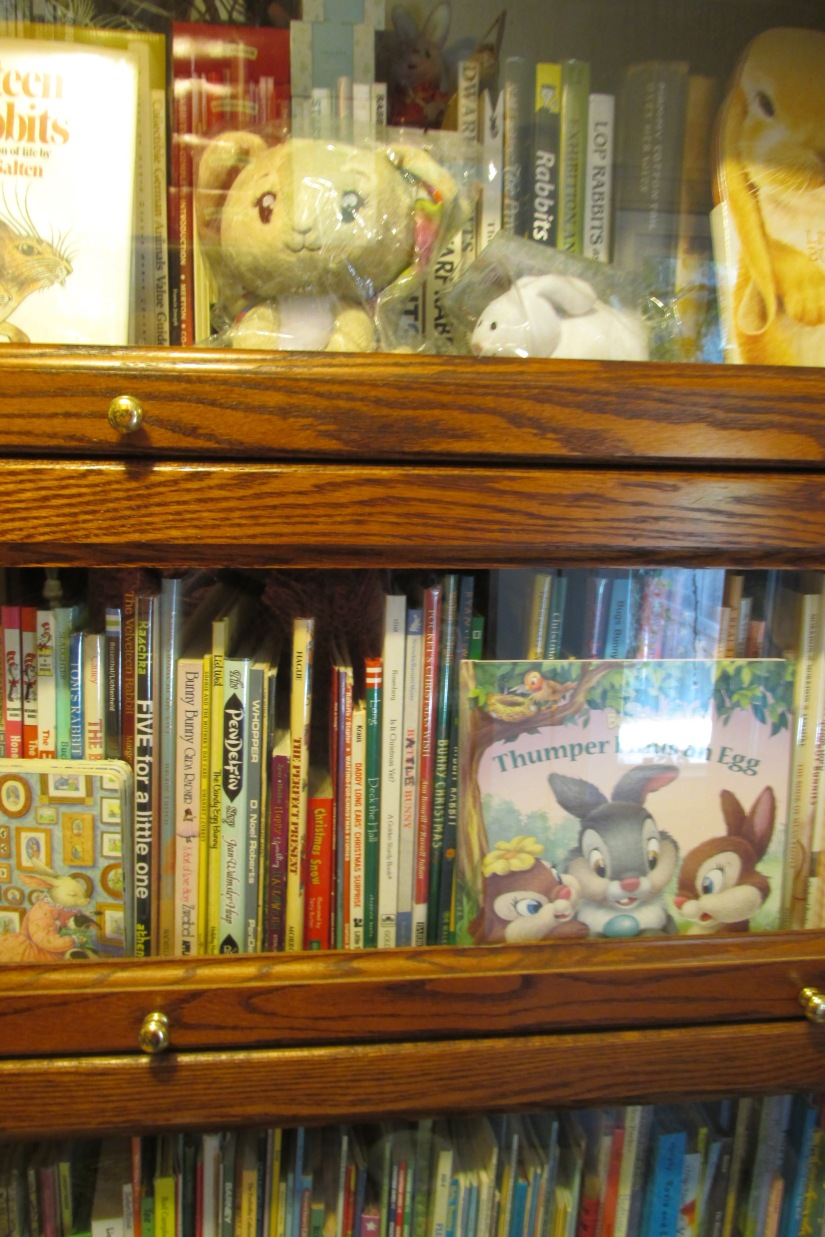 How many books on rabbits can there be.  More than you can imagine...