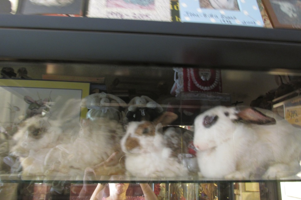 And more stuffed bunnies that have followed over the years.